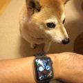 Apple watch買いました