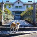 岐阜の旅 大正村へ